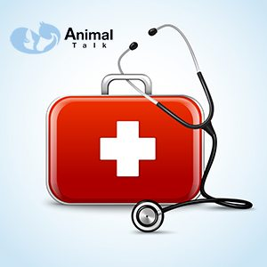 Pet Health / Ionised Health Tags