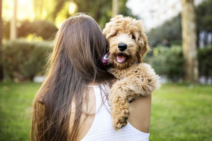 Is Your Pet's Name the Right One?